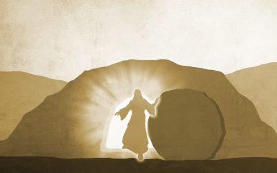 Protegido: Vida de Jesús 11. (Nivel Medio)